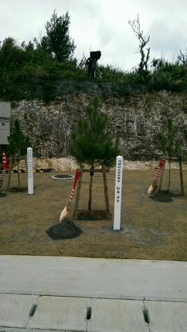 伊良部大橋開通式の記念植樹