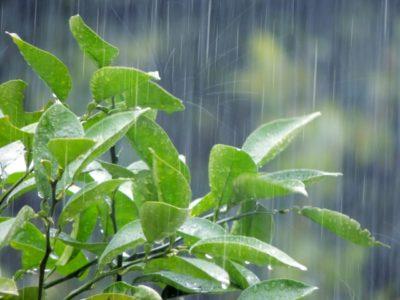 宮古島の梅雨