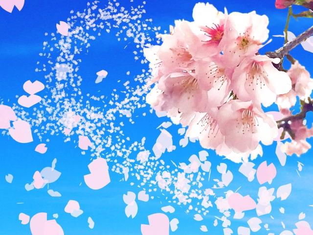 桜 引越しシーズン