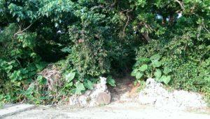 天海山石庭の入口