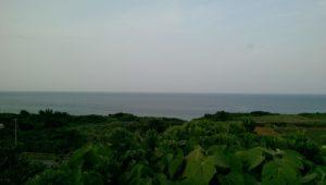 天海山石庭からの景色